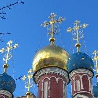 Лазоревые купола на лазоревом небе :: Александр Чеботарь