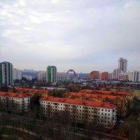 Вид на Живописный мост :: Татьяна Лютаева