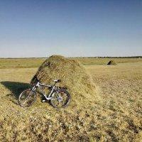 Я долго буду гнать велосипед... :: Андрей Хлопонин