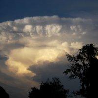 Облако на закате. :: Farin Алёна