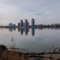 С того берега :: Elena Sartakova