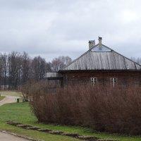 дом за забором из кустов :: Sabina