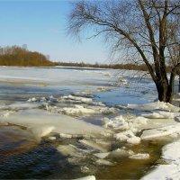 Сила реки :: Геннадий Худолеев