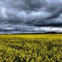 Небо и земля :: Андрей Дыдыкин