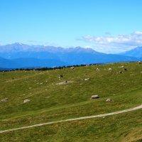 Итальянские Альпы :: Александр Полутин