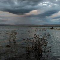 Вечером после дождя. :: Евгений Герасименко