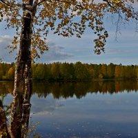 у озера :: Елена Третьякова