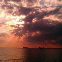 Вышло солнце из-за туч... :: Анжелика Зверькова
