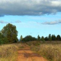 Осенние :: Валерий Симонов