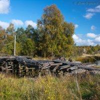Мост, а за мостом деревня. Другой дороги нет( :: Борис Устюжанин