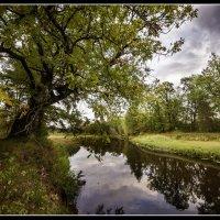 Почти осень :: Андрей Грибов