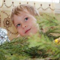мой сынок :: Ольга Рысева