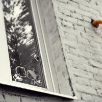 На стекле :: Екатерина Ш