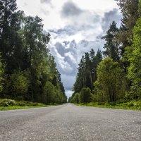 Дорога в даль (оригинал) :: Андрей Дыдыкин