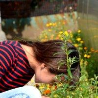 Пчелка :: Azat Гайнанов