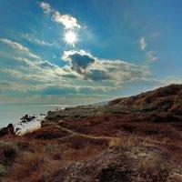 Солнце...солнце!!! :: Александр Вивчарик