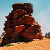 Пустыня и туристы! :: Валентина Потулова