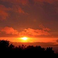 вид из моего окна на закате... :: Надежда Шемякина