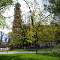 Солнечный летний день :: Андрей Медведев