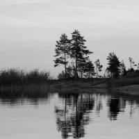остров :: Наталья Ремини