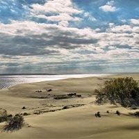 Море, дюны :: Светлана Сапогова