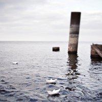 Silence. autumn :: Лилия Хаматгалеева