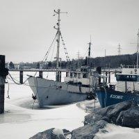 Silence. winter :: Лилия Хаматгалеева