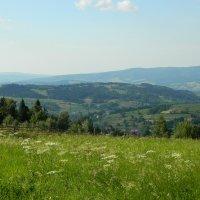 Вид с холмов :: Артур Озол