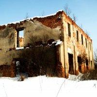 Бывшая усадьба графа Орлова :: Ирина Матвеенко