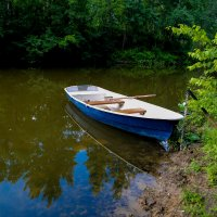 Лесное озеро... :: Виталий Левшов
