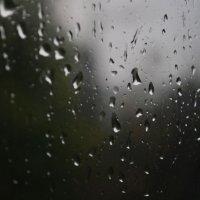 Дождь :: Михаил Махров