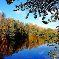 Красавица осень! :: Антонина Гугаева