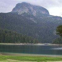 Черное озеро, Черногория :: Елена Елена
