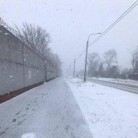 1 апреля со снежком! :: Sabina