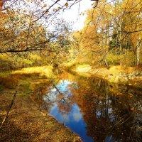 Осень на реке :: Андрей Снегерёв