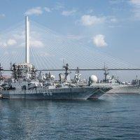 Владивосток без кораблей - не Владивосток ... :: Владимир 1955 Железнов