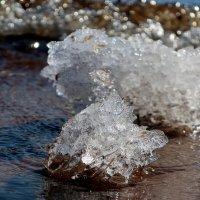 Март на Финском заливе :: Ирина Фирсова