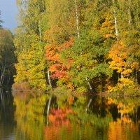 Осенние зеркала............ :: Юрий Цыплятников