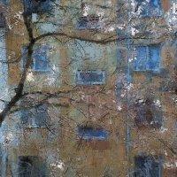 жердела на фоне хрущобы :: Николай Семёнов