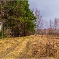Весна идет-весне дорогу! # 2 :: Андрей Дворников