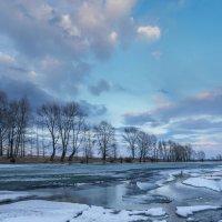 Протока Талая. Весна :: Виктор Четошников