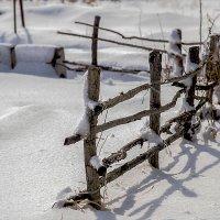 Зарисовки уходящей зимы - 2 :: Евгений Ананевский