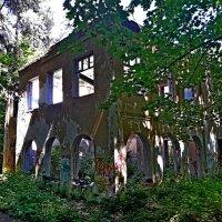 Поселок Барвиха. :: Tata Wolf
