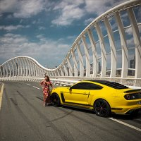 Mustang :: Алексей Пожаренко