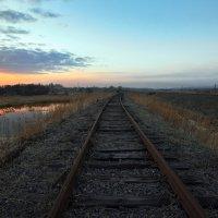 Вечерком по старой  ж/д дороге  ... :: Евгений Хвальчев