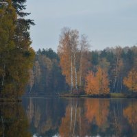 Осенняя тишина........... :: Юрий Цыплятников