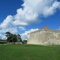 Вид на замок с южного бастиона :: Елена Павлова (Смолова)
