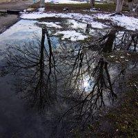 отражение весны... :: Владимир Зырянов