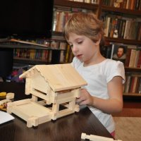 Мы строим дом... :: Борис