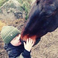 Мальчик-даун и лошадь :: Борис